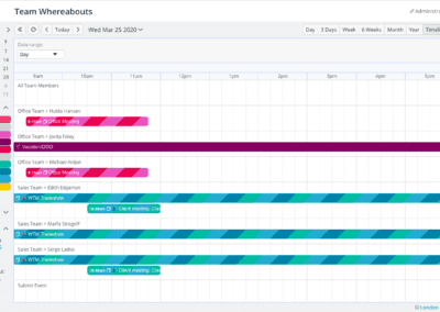 Timeline calendar view with a single day