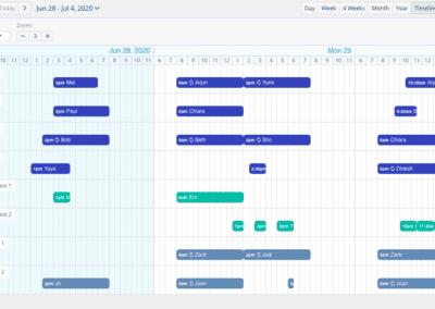 Timeline View Week