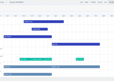 Timeline View Day