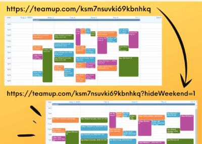 Hide weekends on calendar view via link parameter